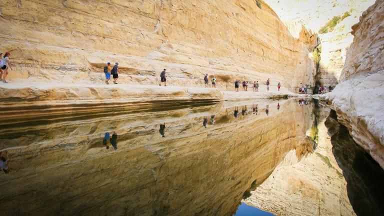Vista de Ein Avdat. Foto deNissan Hananya.