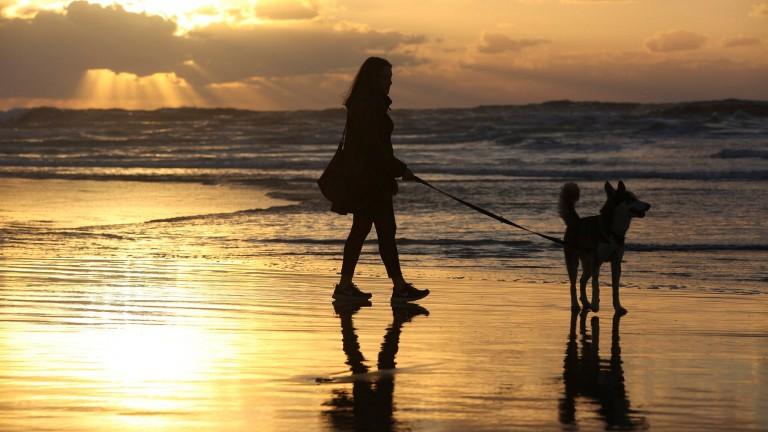 Puesta de sol en la playa. Foto de Flash90.