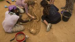 Estudiantes examinan una tumba en el cementerio filisteo descubierto en Ashkelon. Foto de Tsafrir Abayov/Expedición Leon Levy.