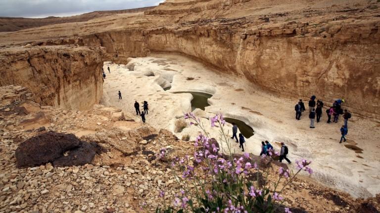 Caminata por el Desierto de Judea. Foto de Yossi Zamir/FLASH90.