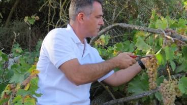 El enólogo Elyashiv Drori en su viñedo en Gvaot. Foto cortesía de la Universidad Ariel.