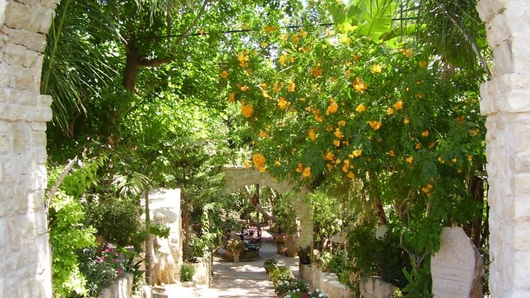 Jardines de El Mona. Vía wikimedia.org.