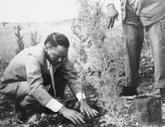Frank Sinatra planta un árbol en las colinas de Jerusalén en 1962. Cortesía del Archivo del Fondo Nacional Judío.