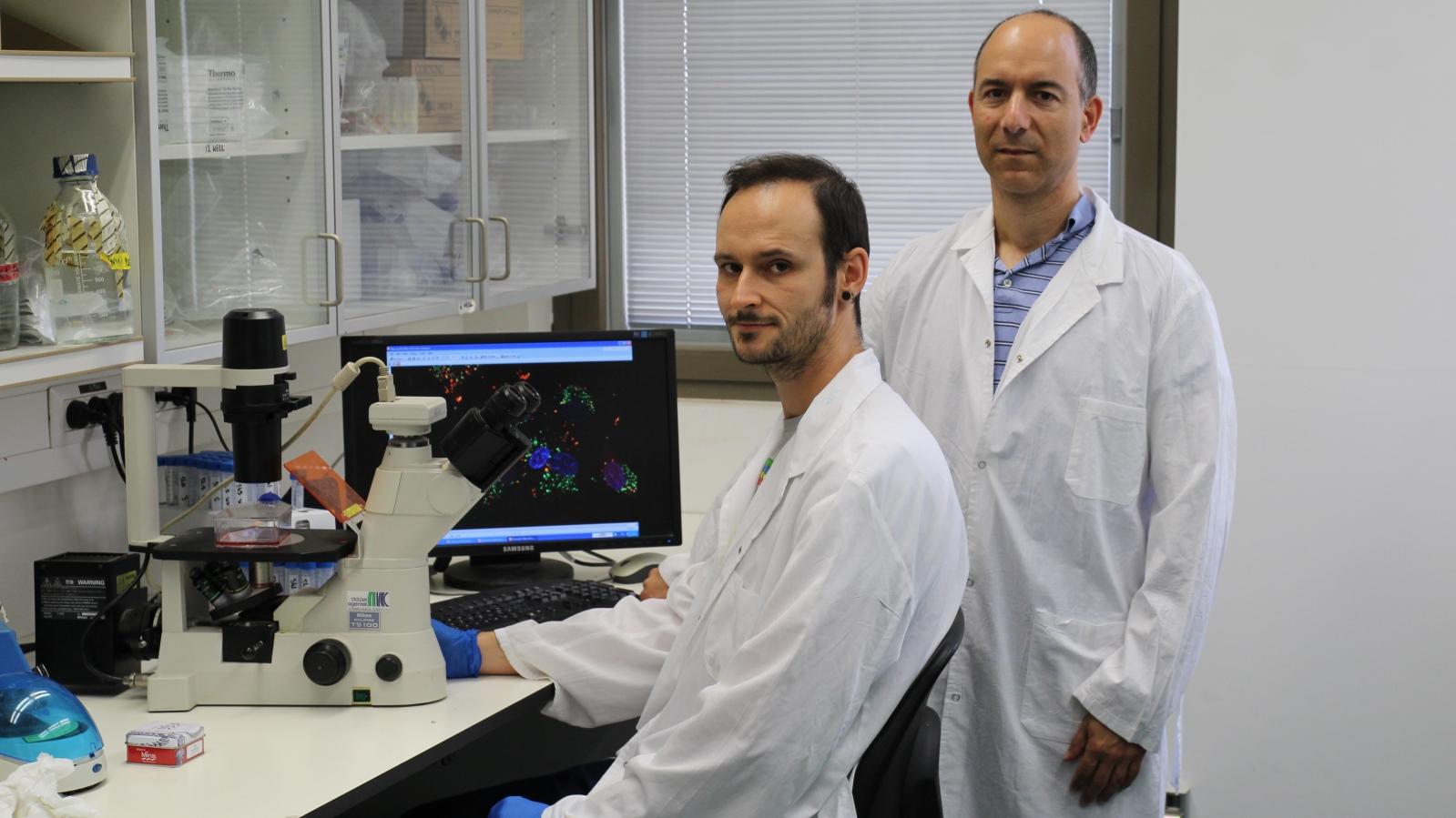 Científicos de Israel descubren un prometedor tratamiento para tumores cerebrales | ISRAEL21c